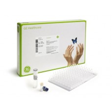 illustra Ready-To-Go GenomiPhi HY DNA Amplification Kits